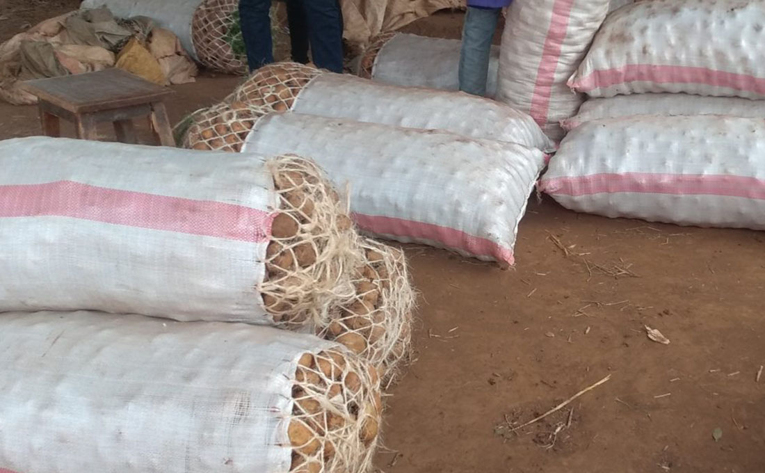 Security personnel mount crackdown on traders flouting potato regulations