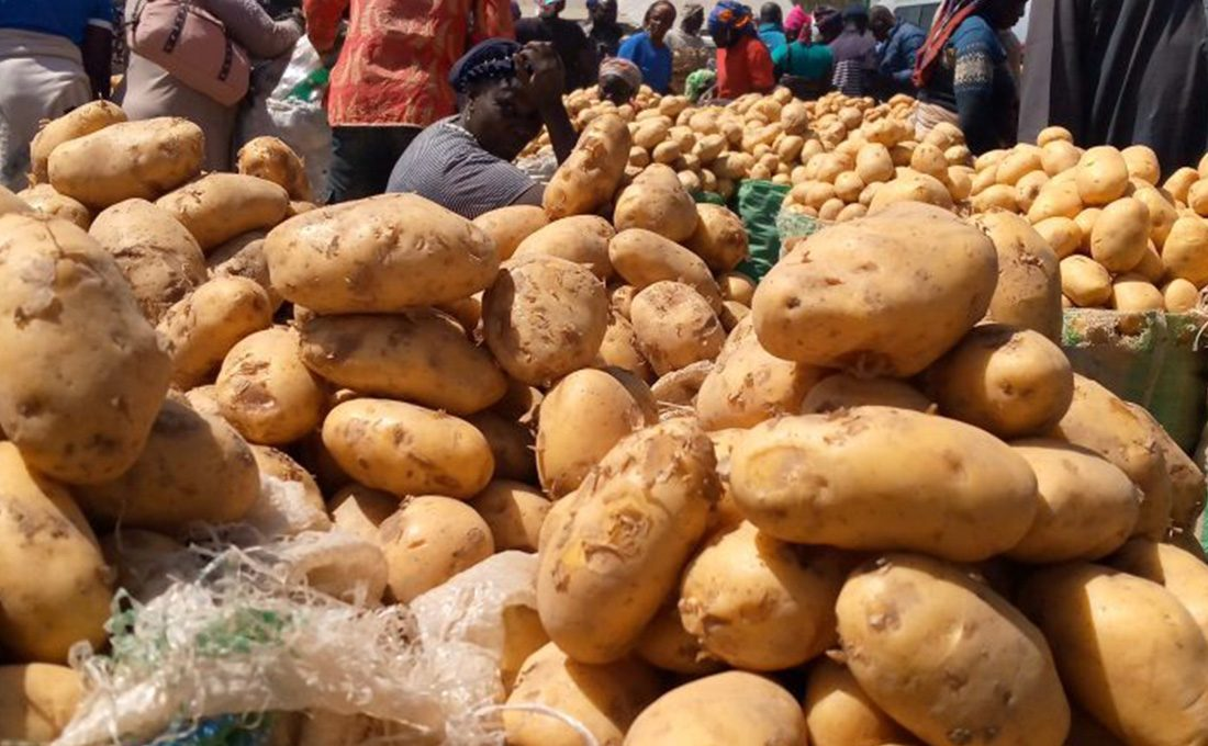 Government will not interfere with the setting of potato prices
