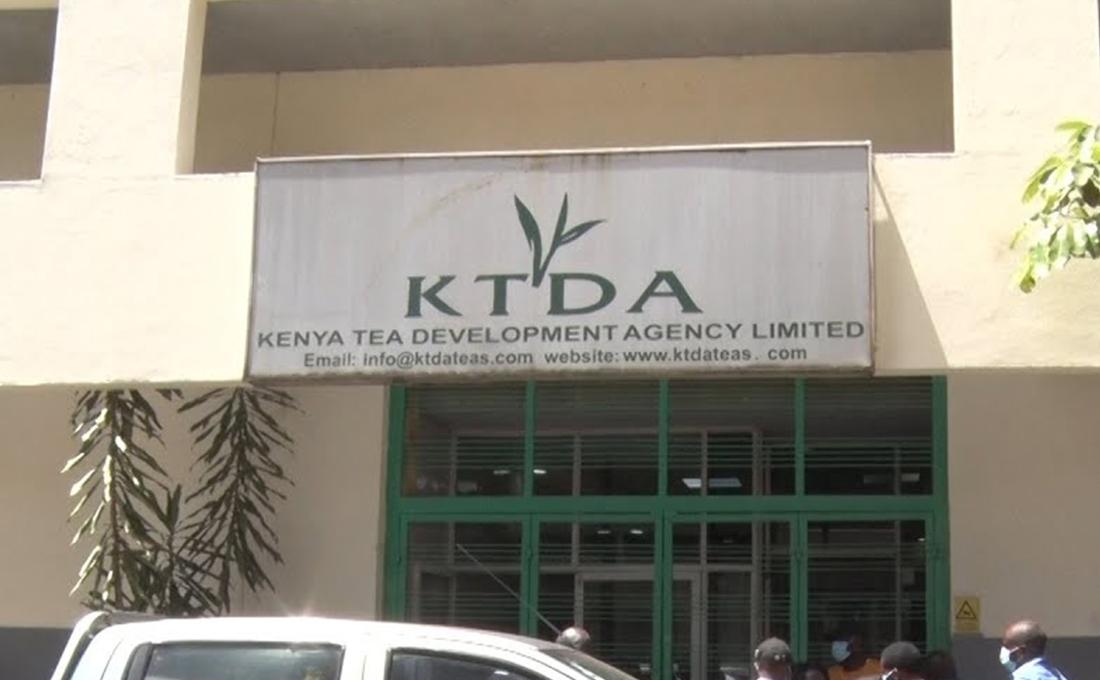 KTDA shareholders elect new Directors