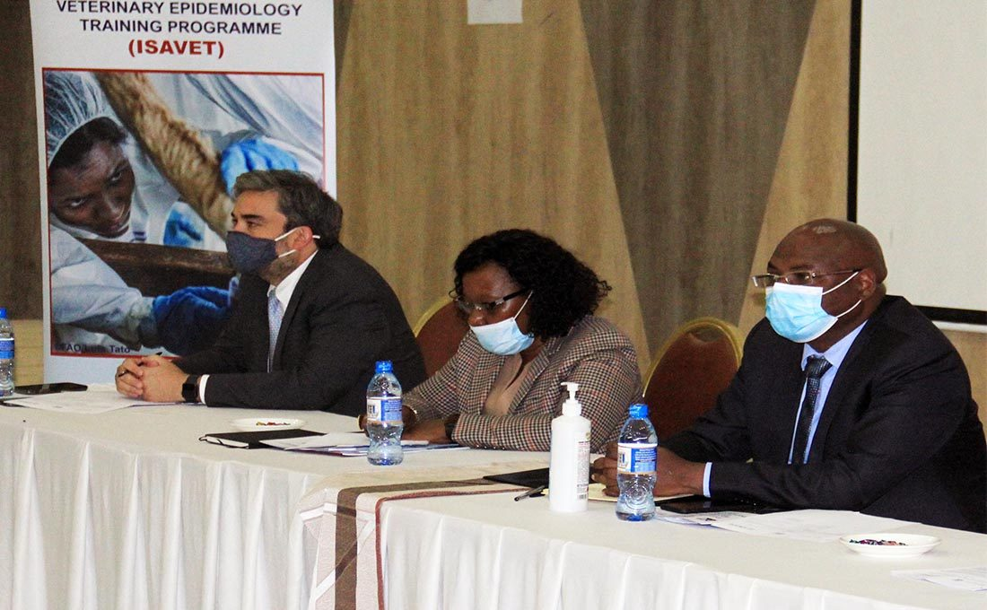 Kenya inks deal with USAID, FAO to train vets on trans-boundary animal diseases