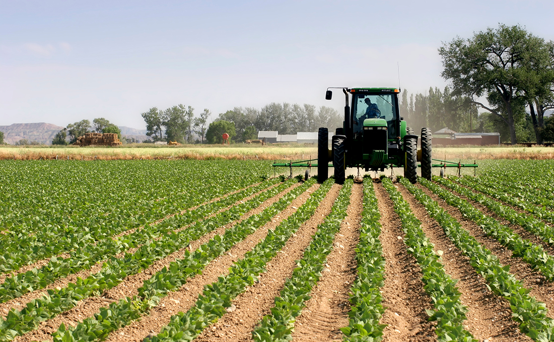 Kenya's first Ksh.3 billion fertilizer plant starts operations in Nakuru