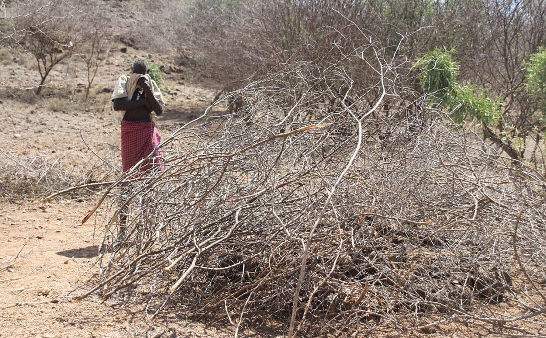 Over 5000 women, children face hunger in Baringo